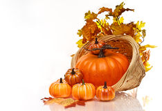 Pumpkins and Autumn leaves in a wicker basket. Stock Photos