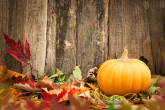 Pumpkins and autumn leaves Stock Photo