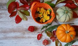 Pumpkins and autumn leaves on wooden background. Vibrant orange pumpkins and colorful autumn leaves on wooden background Stock Photography
