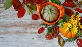 Pumpkins and autumn leaves on wooden background. Vibrant orange pumpkins and colorful autumn leaves on wooden background Stock Images