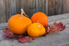 Pumpkins with autumn leaves on wooden board Stock Images