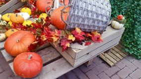 Pumpkins and autumn leaves on wooden table royalty free stock images