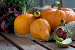 Pumpkins and autumnal decoration Royalty Free Stock Photo
