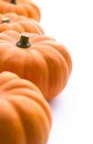 Pumpkins background Stock Images