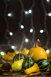 Pumpkins background Stock Image