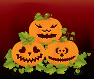Pumpkins. Background with orange pumpkins and leaves Royalty Free Stock Photos