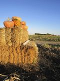 Pumpkins on a Bale of Hay Royalty Free Stock Image