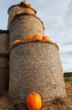 Pumpkins on a bale of straw Stock Photos