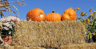 Pumpkins on Bale of Straw Hay Stock Photo