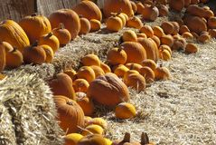 Pumpkins on bales Royalty Free Stock Photo