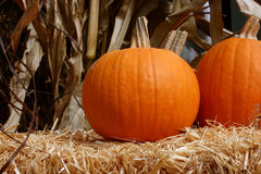 Pumpkins On Bales Of Hay stock photos