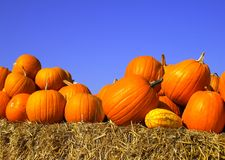 Pumpkins on bales of straw (hay) Royalty Free Stock Image