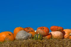 Pumpkins on bales of straw (hay) Stock Images