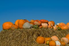 Pumpkins on bales of straw (hay) Stock Image