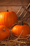 Pumpkins In The Barn Stock Images
