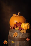 Pumpkins On Barrel Stock Photo