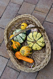 Pumpkins in a bas Stock Images