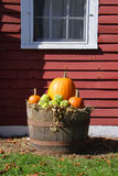 Pumpkins in the basket Royalty Free Stock Images