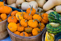 Pumpkins in a basket Stock Photo