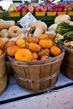 Pumpkins in a basket Stock Images