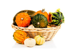 Pumpkins in basket Royalty Free Stock Images