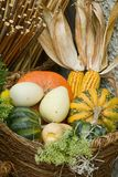 Pumpkins basket Stock Images