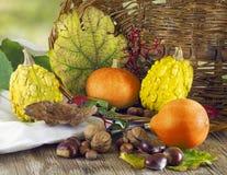 Pumpkins with basket Stock Photos