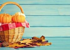 Pumpkins in a basket Stock Photos