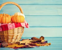 Pumpkins in a basket Royalty Free Stock Photography