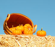 Pumpkins with Basket on Straw Bale over Sky Royalty Free Stock Photo