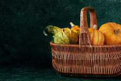 Pumpkins in the basket. Variety of pumpkins in the basket on a dark background Royalty Free Stock Photos