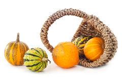 Pumpkins in basket Royalty Free Stock Image