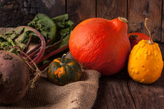 Pumpkins and beet Stock Image