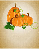 Pumpkins on a beige background Stock Images