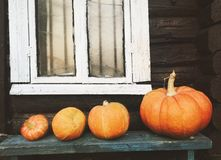 Pumpkins on a bench, autumn. Autumn, october, village atmosphere and a Halloween mood. The street is chilly and gloomy. But bright orange pumpkins are ready for stock images