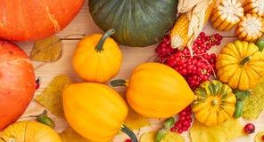 Pumpkins, berries, fallen leaves, corn, acorn flat on wooden background stock image