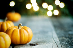 Pumpkins With Bokeh & Style Stock Image