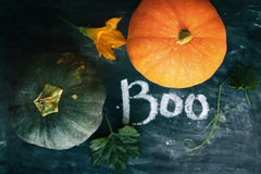 Pumpkins with Boo sign. Pumpkin and flowers on a blackboard with Boo sign royalty free stock photos