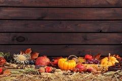 Pumpkins border Stock Photo