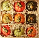 Pumpkins in box stock photo