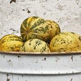 Pumpkins in the bucket Stock Photo