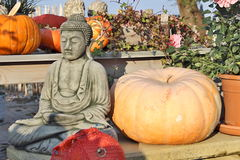 Pumpkins and a Buddha Royalty Free Stock Images