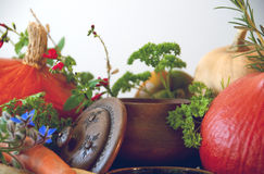 Pumpkins, carrots, seeds, butternut squash and herbs Royalty Free Stock Photo