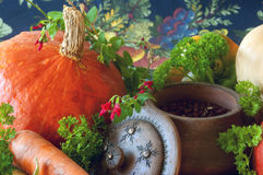 Pumpkins, carrots, seeds, butternut squash and herbs Stock Photography