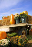 Pumpkins on the cart Stock Image