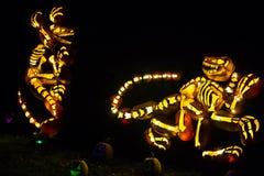 Pumpkin Art: A Pair of Theropod Dinosaurs Royalty Free Stock Photos