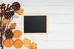 Pumpkins and Chalkboard over Wooden Background. Rustic fall background of autumn leaves, pine cones and mini pumpkins with chalkboard for free copy space for royalty free stock images