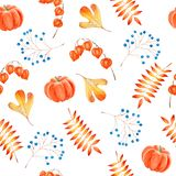 Pumpkins, chinese lantern plants and leaves in a watercolor hand drawn seamless pattern Stock Photos