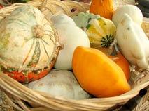Pumpkins closeup Royalty Free Stock Photography
