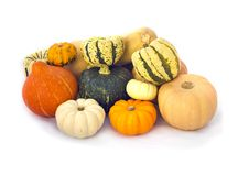 Pumpkins collection isolated on white. Orange, white and green Pumpkins collection isolated on white royalty free stock image